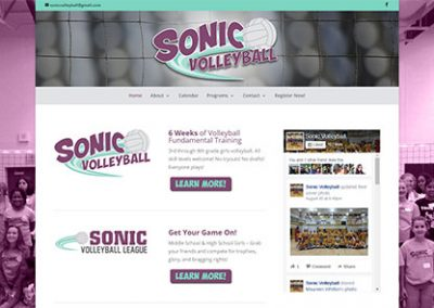 Sonic Volleyball
