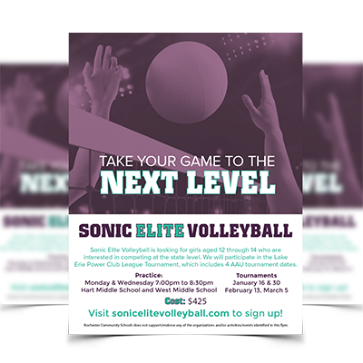 Sonic Elite Volleyball - Zoda Design